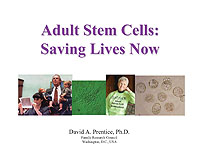 Adult stem cells from sources such as bone marrow, muscle, and umbilical ...