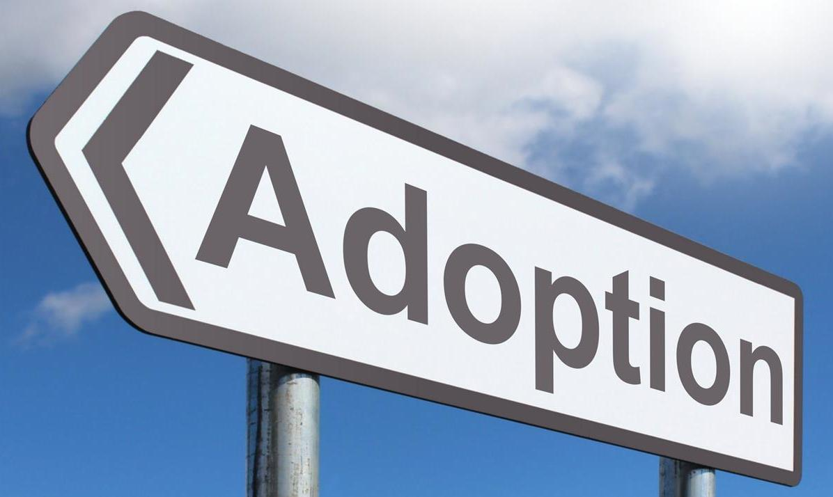 FRC Blog » Lawsuit Targeting Faith-Based Adoption Agencies Allowed to Proceed i...