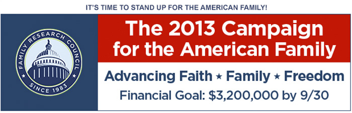 2013 Campaign for the American Family